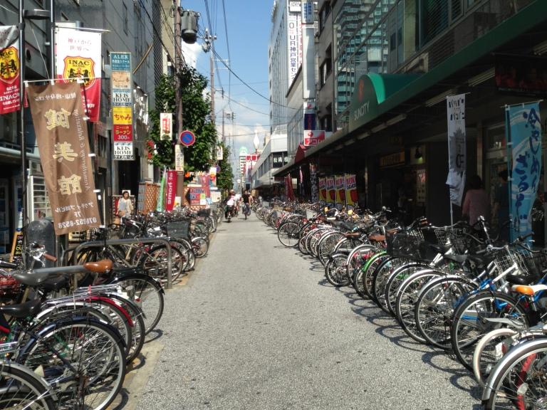 Bikes, Anyone?