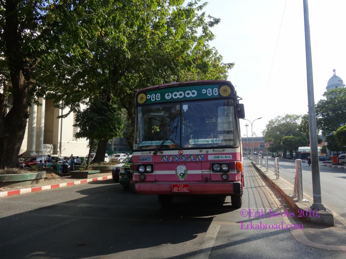 Pink Bus.jpg
